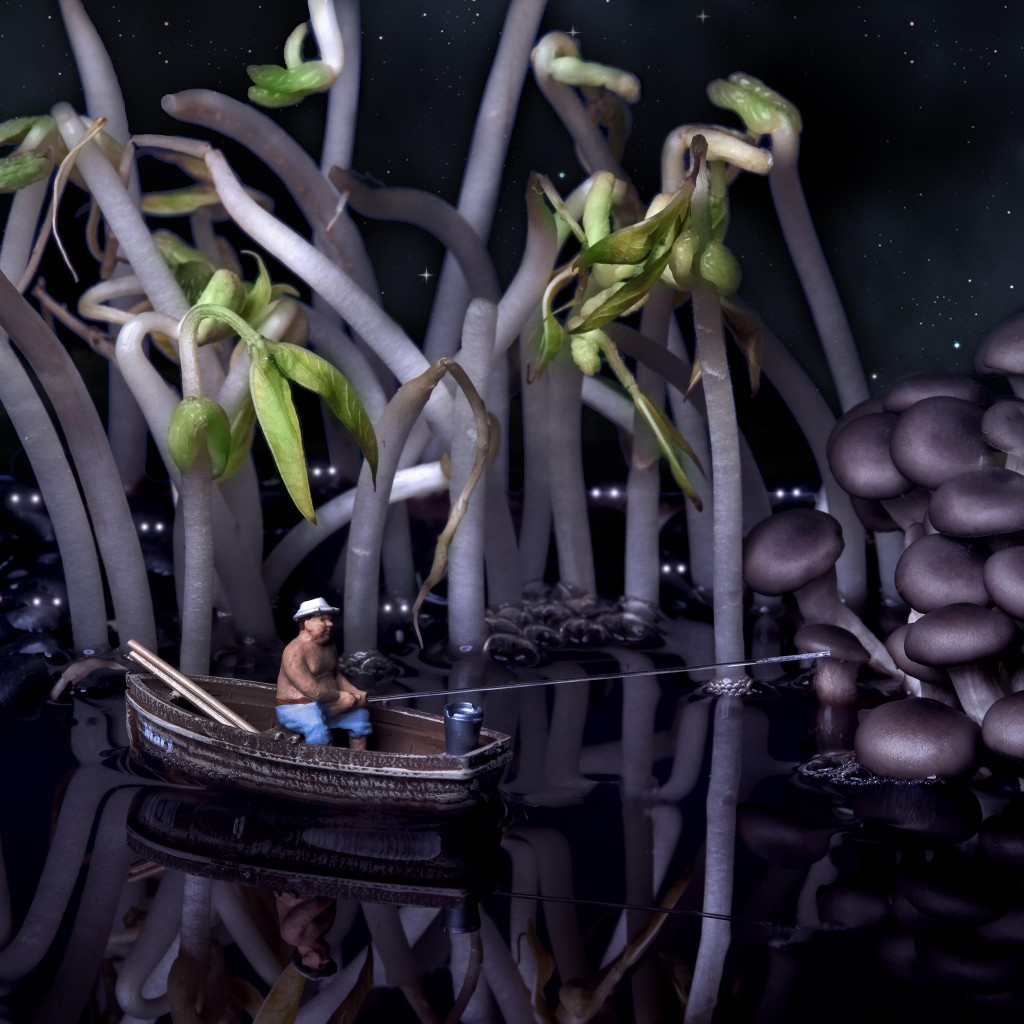 Night fishing in the swamp of black beans