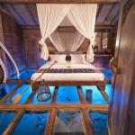 Astonishing Room's Glass Floor Reveals Underwater Wonders
