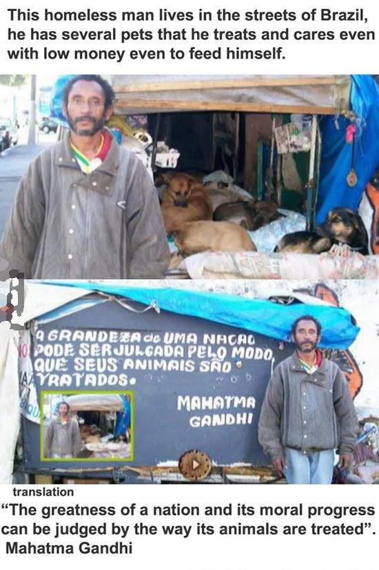 This Homeless Brazilian Living With Pets