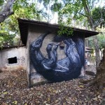 27 Of The Most Astounding Street Artworks By ROA