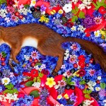 Russian Photographer Honors The Dead Animals And Its Absolutely Heartbreaking
