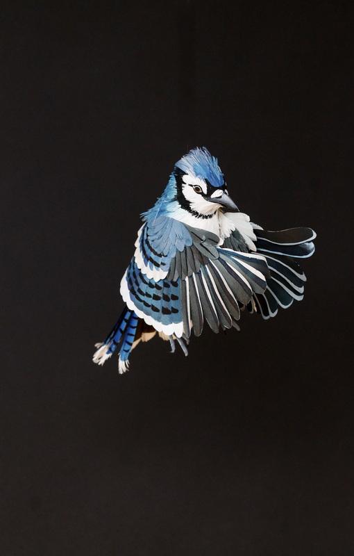 Paper Craft Art-13