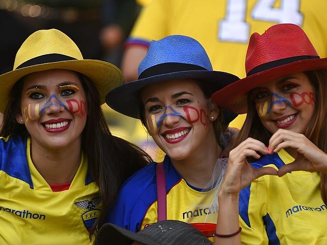 Sexy Ecuador Soccer Fans