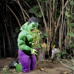 How Super Heroes Look At Home? Awesome Photography of Gregg Segal