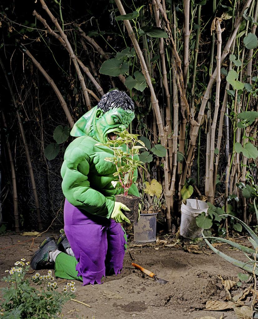 Incredible Hulk At Home