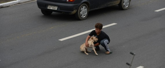 This Boy Who Risks Life to Save His Dog