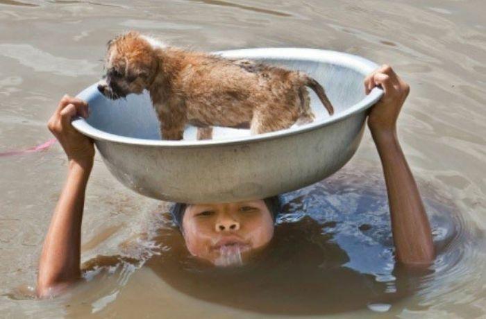 This Kid Saving A Pup