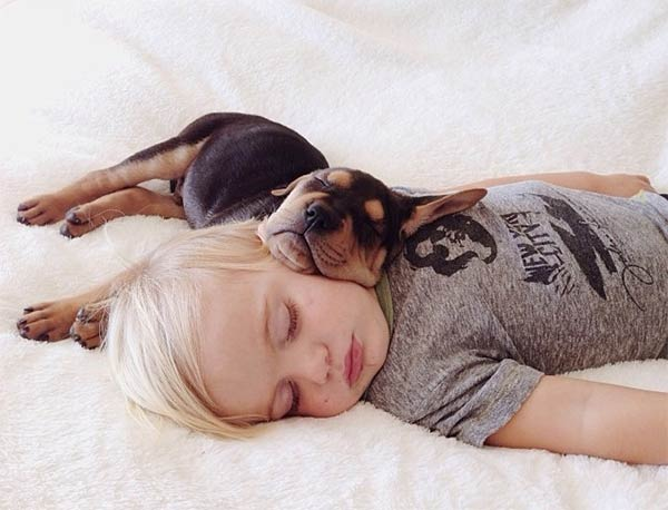 Sleeping With Dogs-10