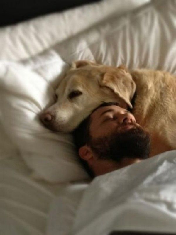 Sleeping With Dogs-12