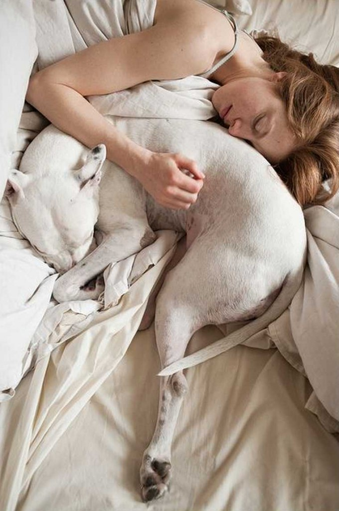 Sleeping With Dogs-17