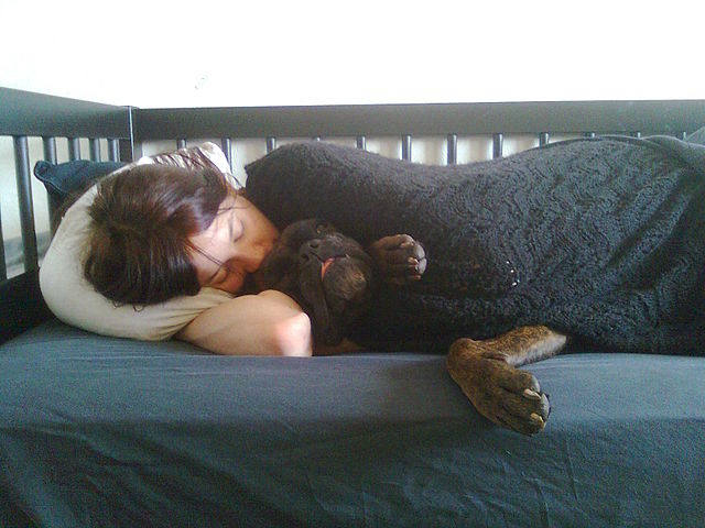Sleeping With Dogs-18
