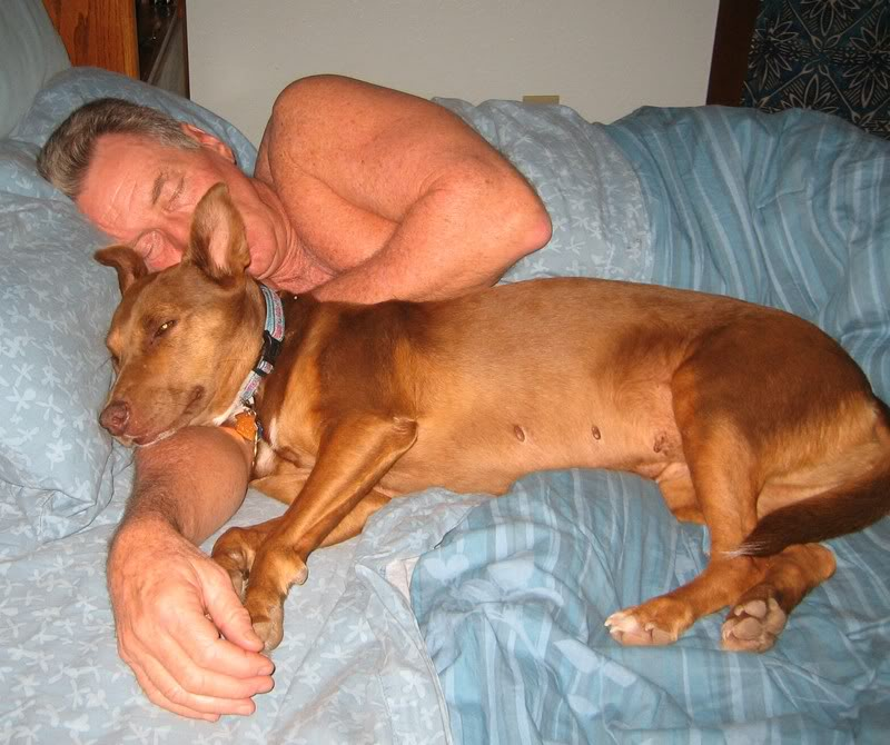 Sleeping With Dogs-20
