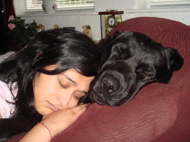 30 People Sleeping With Dogs And Its The Most Adorable