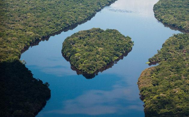 Congo Basin, Congo