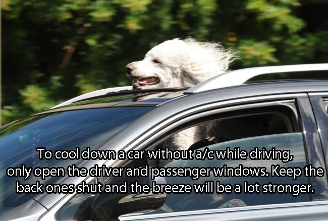 How To Cool Down A Car Without A C