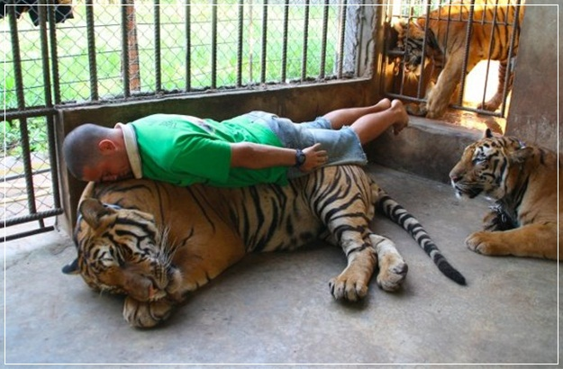 Planking Pictures-23
