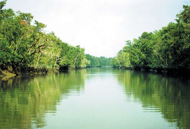 The Sundarbans, India and Bangladesh