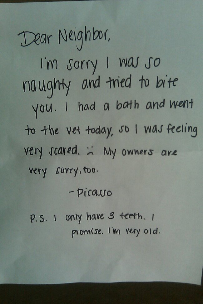Dogs need to apologize too