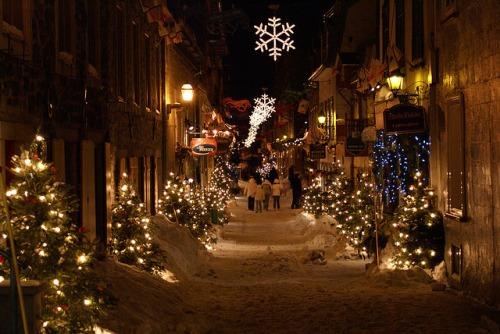 beautiful Christmas pics-01