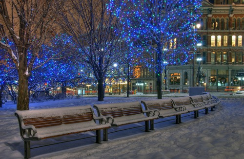 beautiful Christmas pics-05