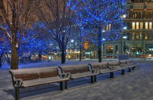 beautiful Christmas pics-05