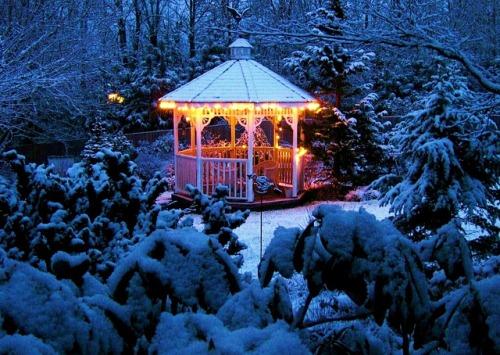 beautiful Christmas pics-06