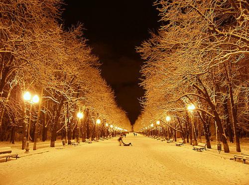 Christmas pics-09
