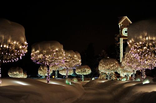 Christmas pics-11
