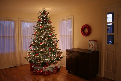 christmas tree in a small living room 30 most beautiful pics of all time 27465
