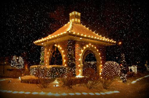 Christmas pics-12