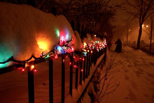 Christmas pics-13