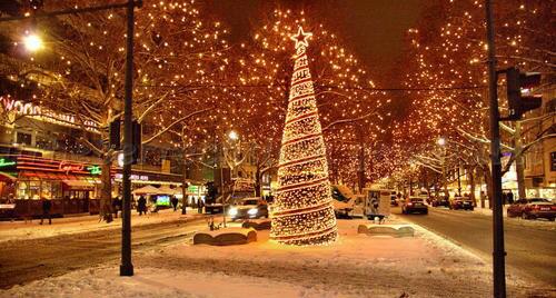 Christmas pics-15