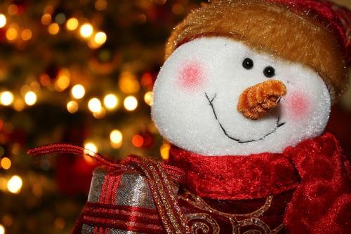 Christmas pics-19