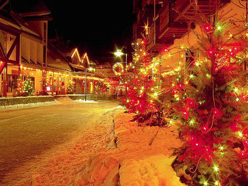 Christmas pics-26