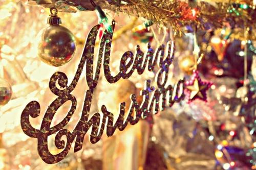 Christmas pics-29