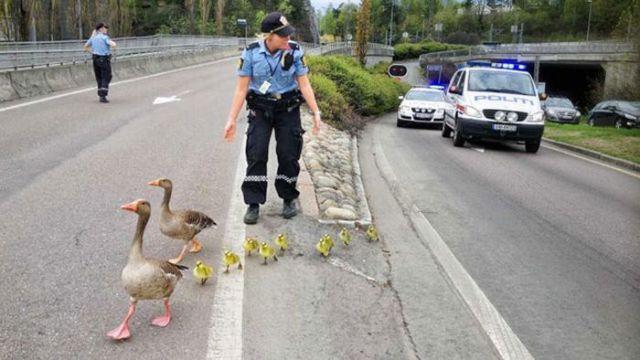 Cops Having Fun-10