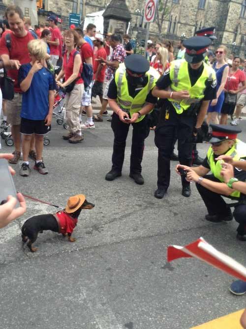 Cops Having Fun-12