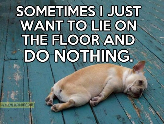 i just want to lie on the floor and do nothing