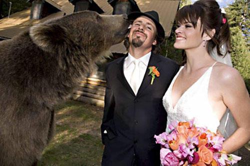 Wedding photo with bear