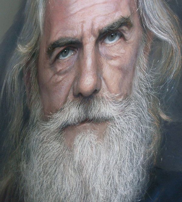 Artist Creates Hyperrealistic Portraits Using Pastels