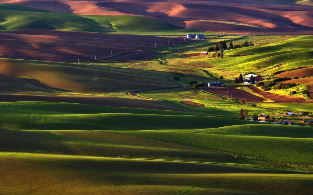 these landscapes
