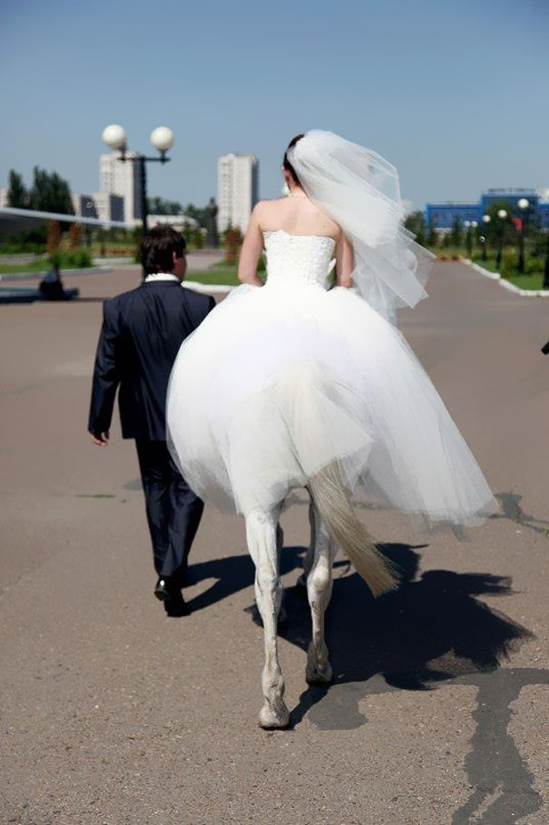 this bride is not a centaur