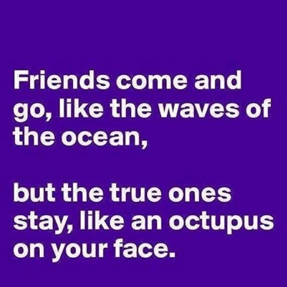 crazy funny friendship quotes