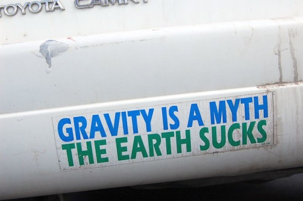 funny bumper stickers sayings
