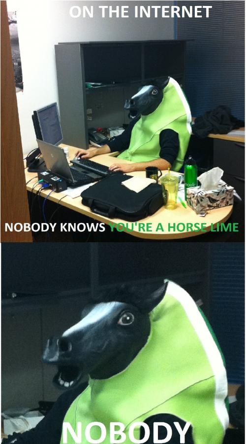 funny horse mask