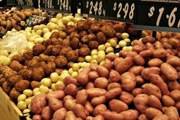 Potato Industry Scholarship