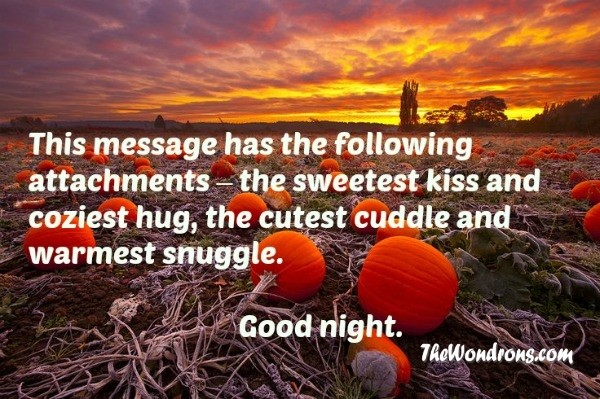 cute goodnight quotes
