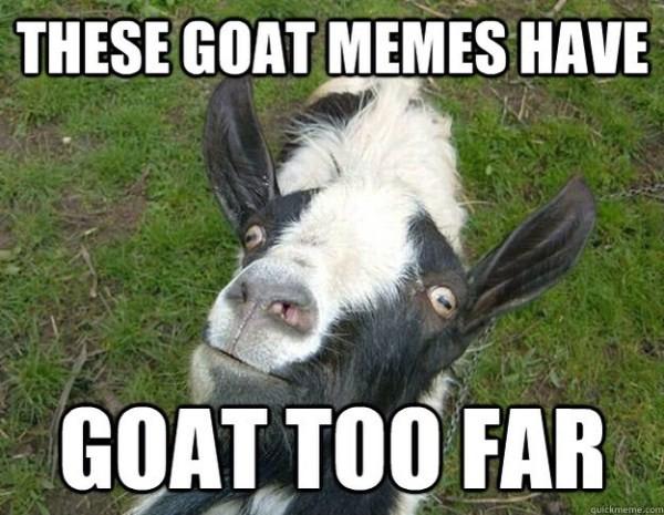 goats funny