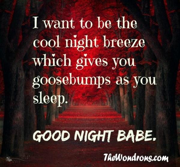 I Love You Quotes Goodnight : Good Night Babe I Love You Quotes The 50 best good night quotes of all ...