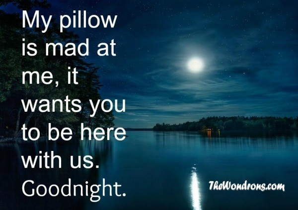good night moon quotes